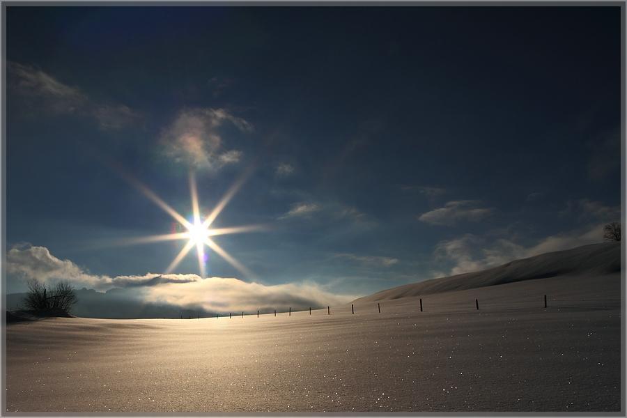 Winterworld II