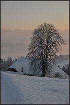 Winterwunderland 2