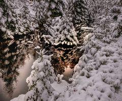 Winterwunderland.... am Reschbach im Nationalpark Bayerischer Wald