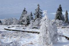 ... Winterzauber ...