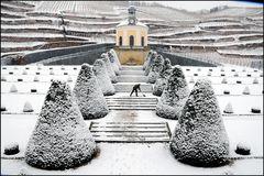 Winterzauber auf Schloss Wackerbarth