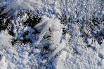 Winterzauber-Eiskristalle