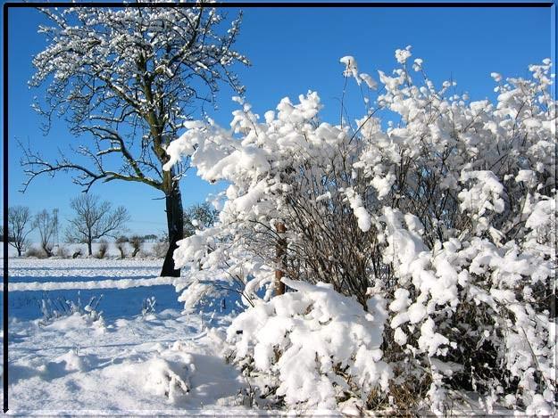 Winterzauber in der Altmark