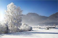 ~ Winterzauber VI ~