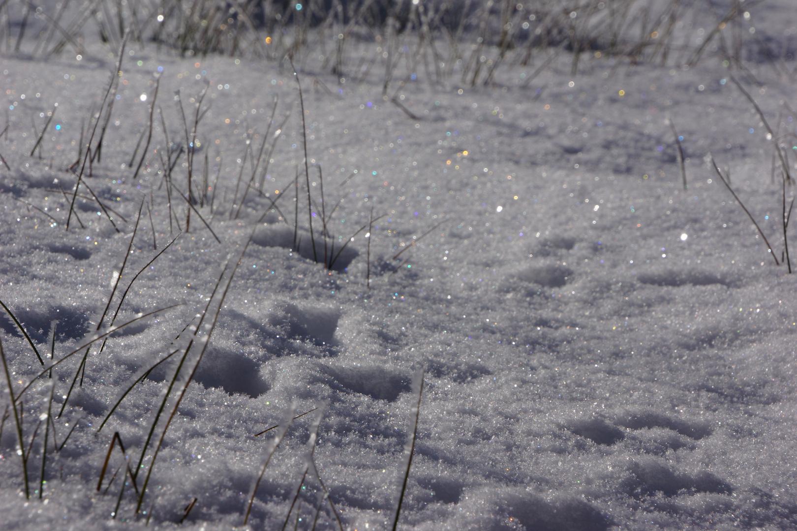 Winterzauber_07