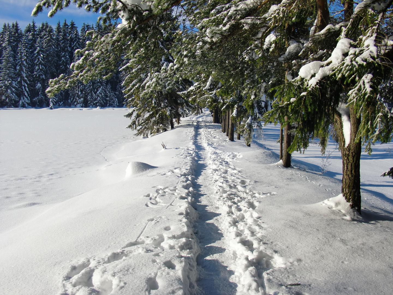 Winterzeit 5