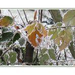 ... Winterzeit * ...