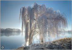 < Winterzeit >