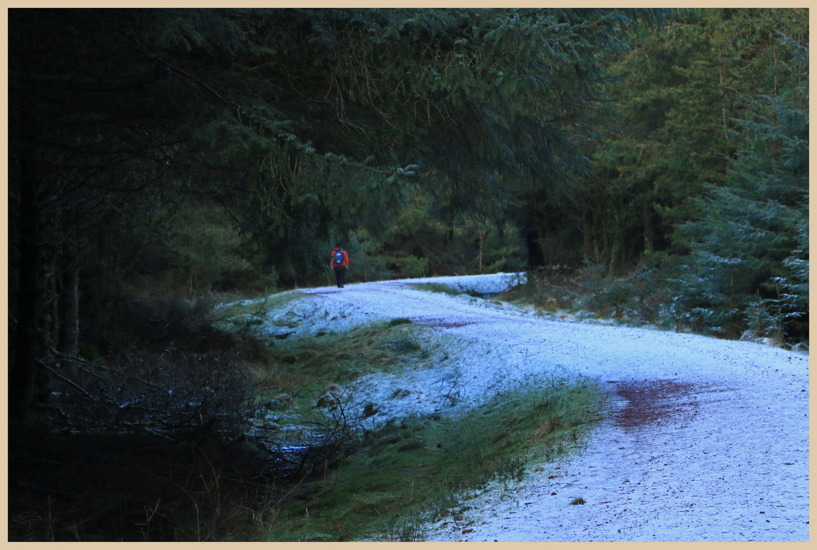 wintry path