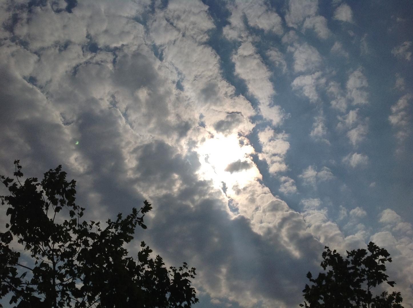 Wir Bleiben Wach Bis Die Wolken Wieder Lila Sind Download