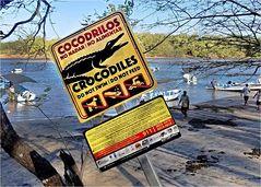 Wir haben keine Krokodile, dafür kommt Corona :-(