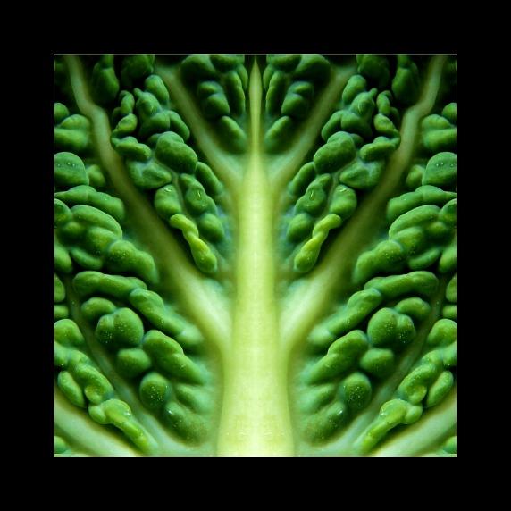 Wirsymmetrie