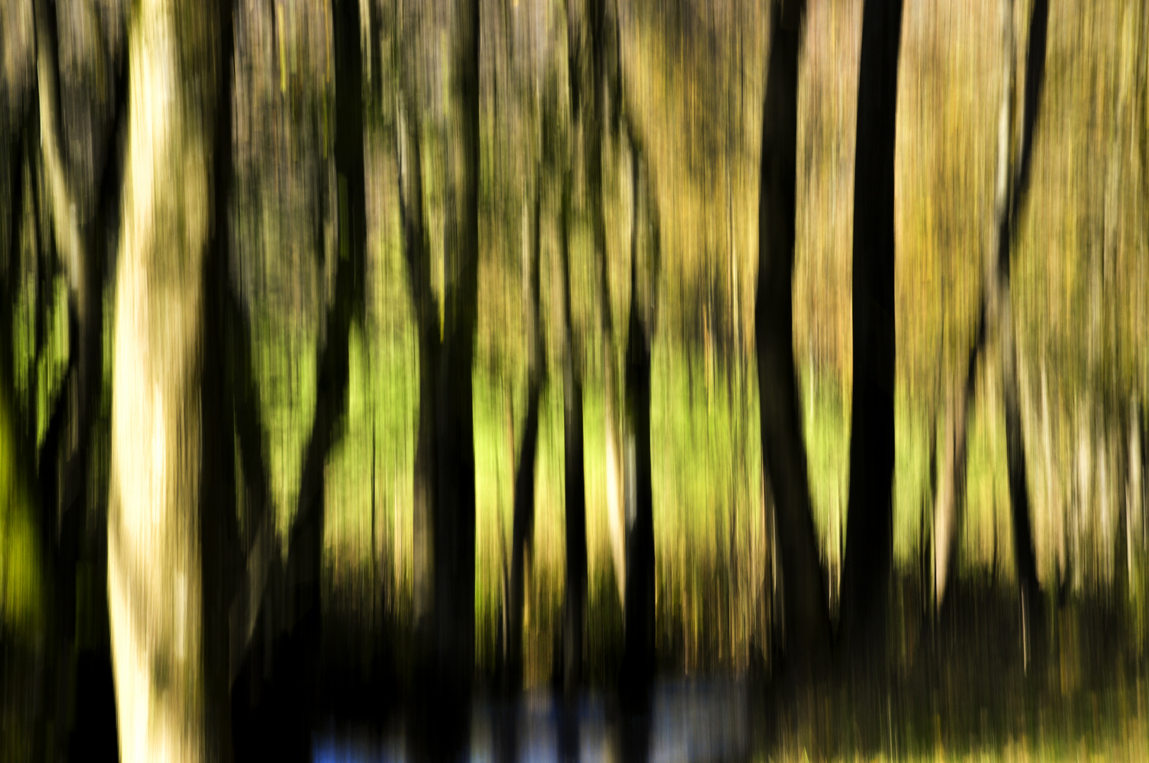 Wisch- Bäume
