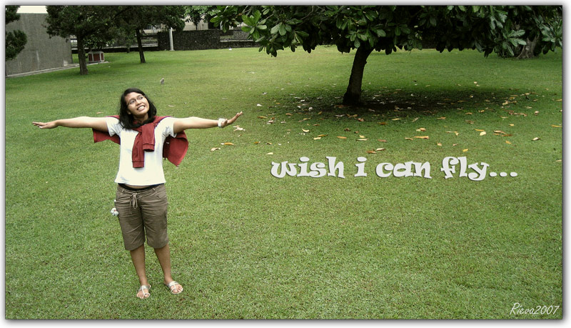 wish i can fly...