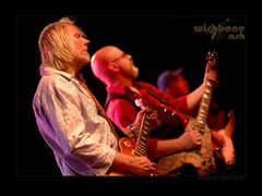 WishboneAsh2015