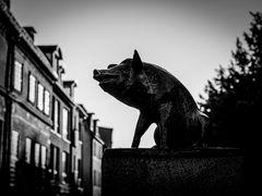 Wismar: Schweinskulptur an der Schweinsbrücke