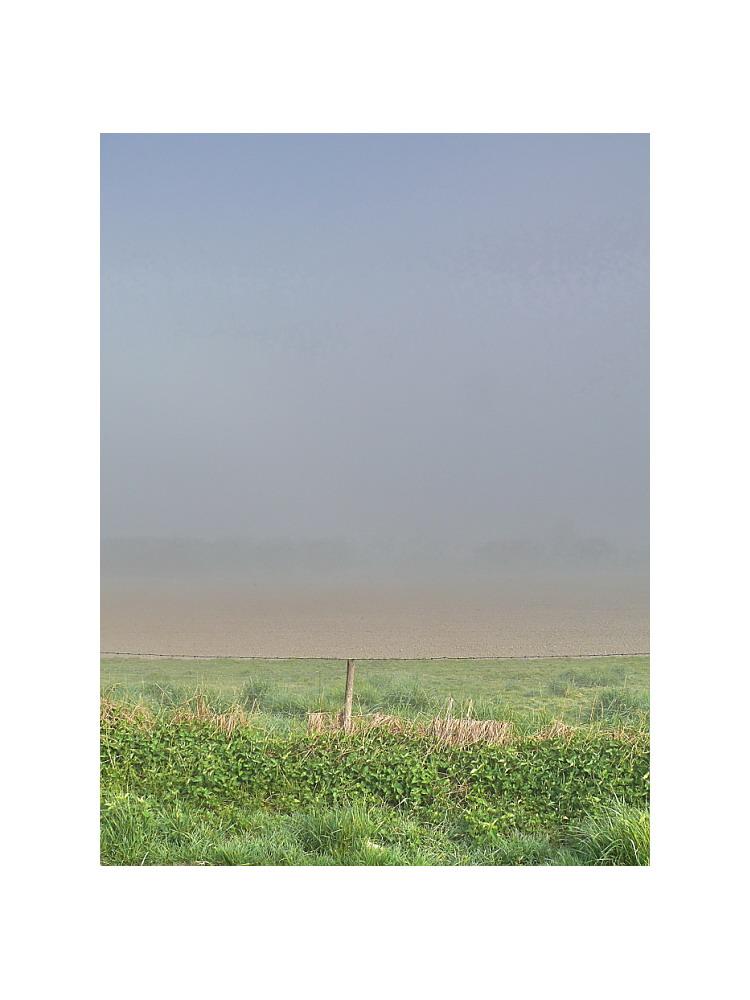 with fog