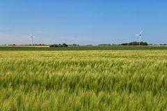 Wittower Landschaft