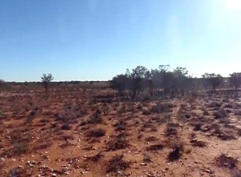wo genau (10-100km2) ist diese Wüste?