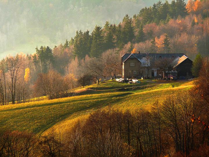 Wo ich will leben..