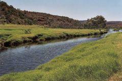 WO ist das? -> gelöst !!! Finke River, Palm Valley, 'nähe' Alice Springs