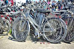 wo kann man hier Fahrräder leihen?