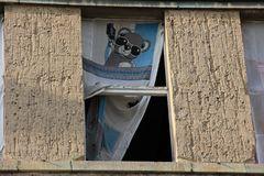 Wo macht der Panda-Bär Urlaub? - Aufgelöst