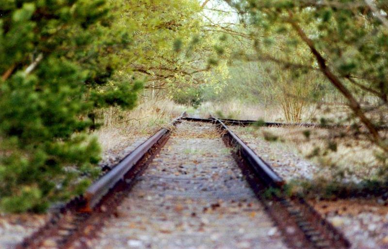 Wo soll denn das Gleis hinführen?
