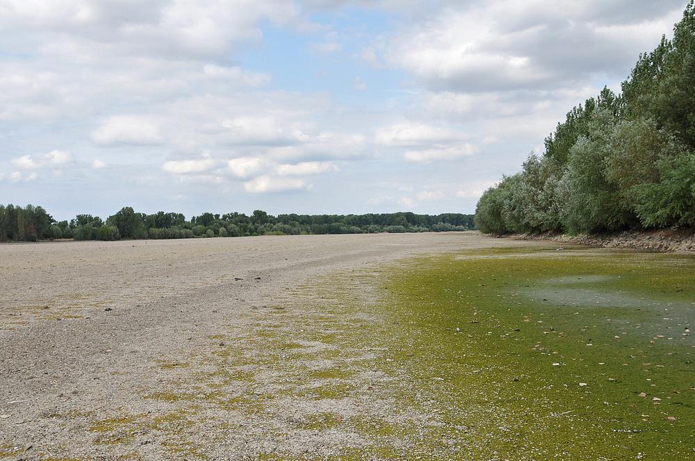 Wo sonst der Rhein fließt 14