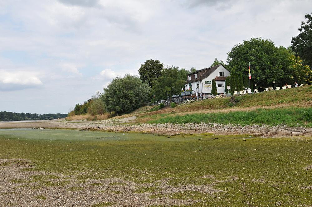 Wo sonst der Rhein fließt – Gaststätte Fährhaus 02