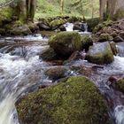 Wo wilde Wasser rauschen