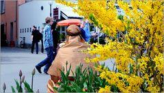 ... woanders ist gerade Frühling ...