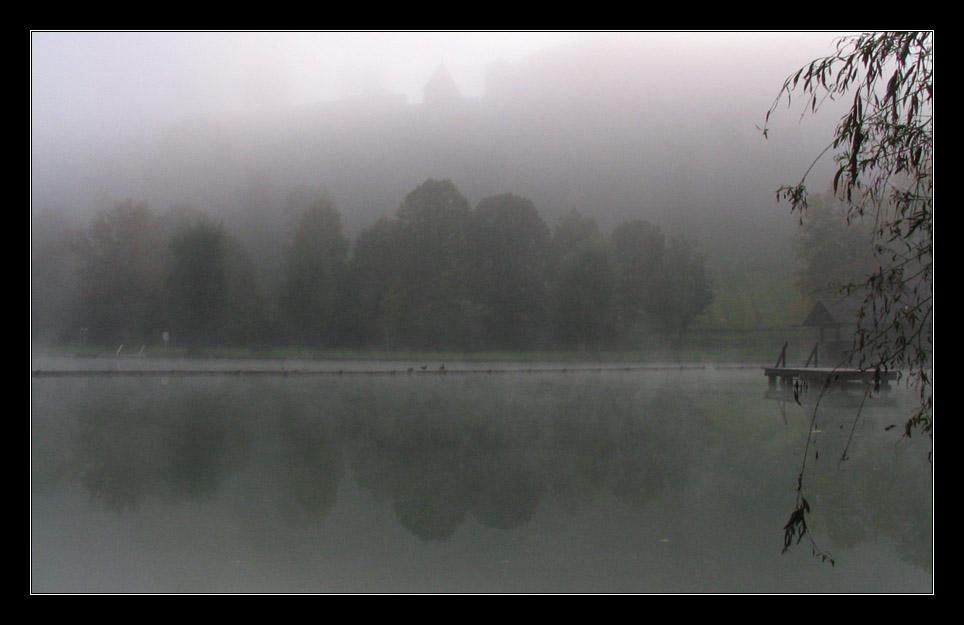 Woehrsee im Nebel