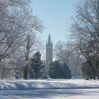 Wörlitzer Kirche im Winter