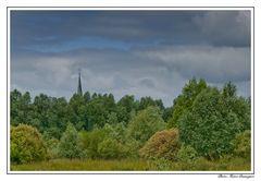 Woeste Niedermoor Landschaft