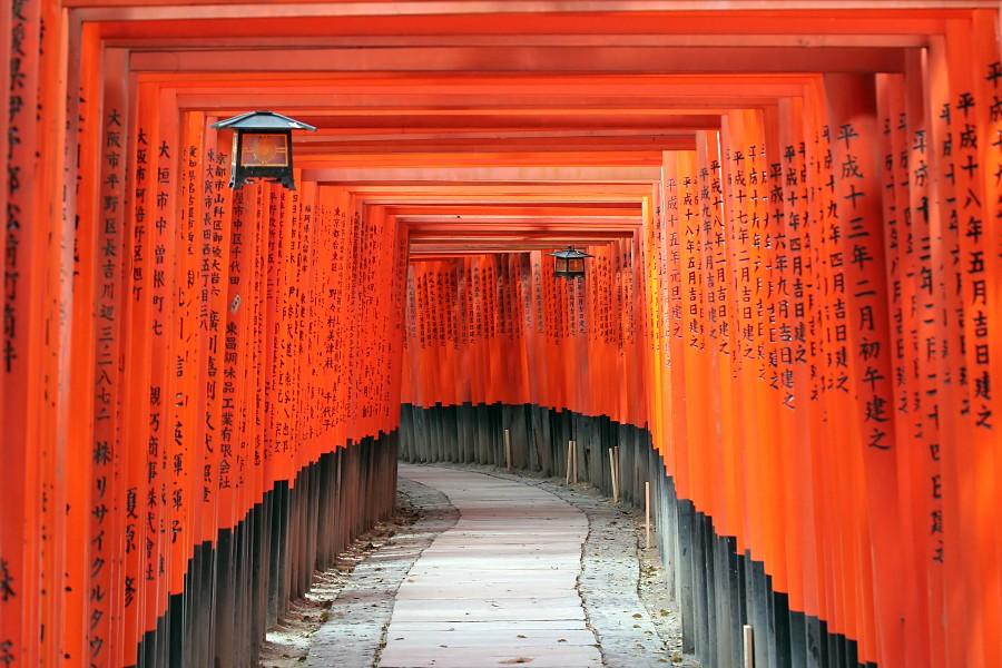 Wohin führt der Torii-Pfad?