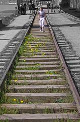 Wohin führt der Weg, die Bahn ist schon weg