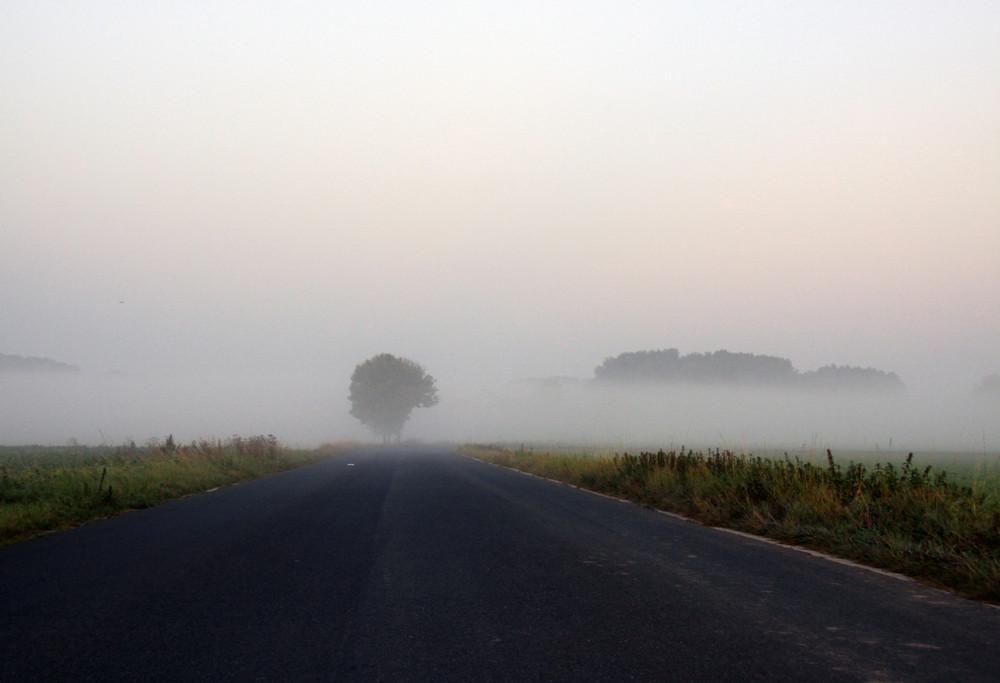 Wohin führt der Weg heute - Wahlsonntag 27.09.09