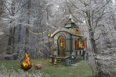 wohnen im Winterwald