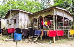 Wohnhaus im Regenwald