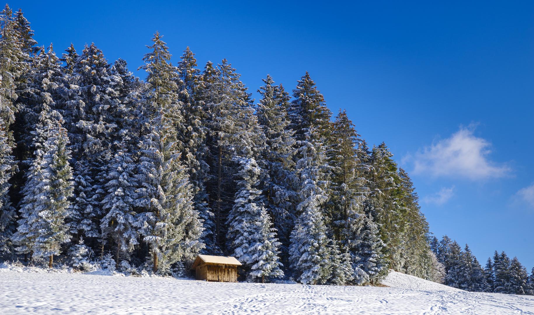 Wohnt hier der Weihnachtsmann mit Rudolph dem Rentier?
