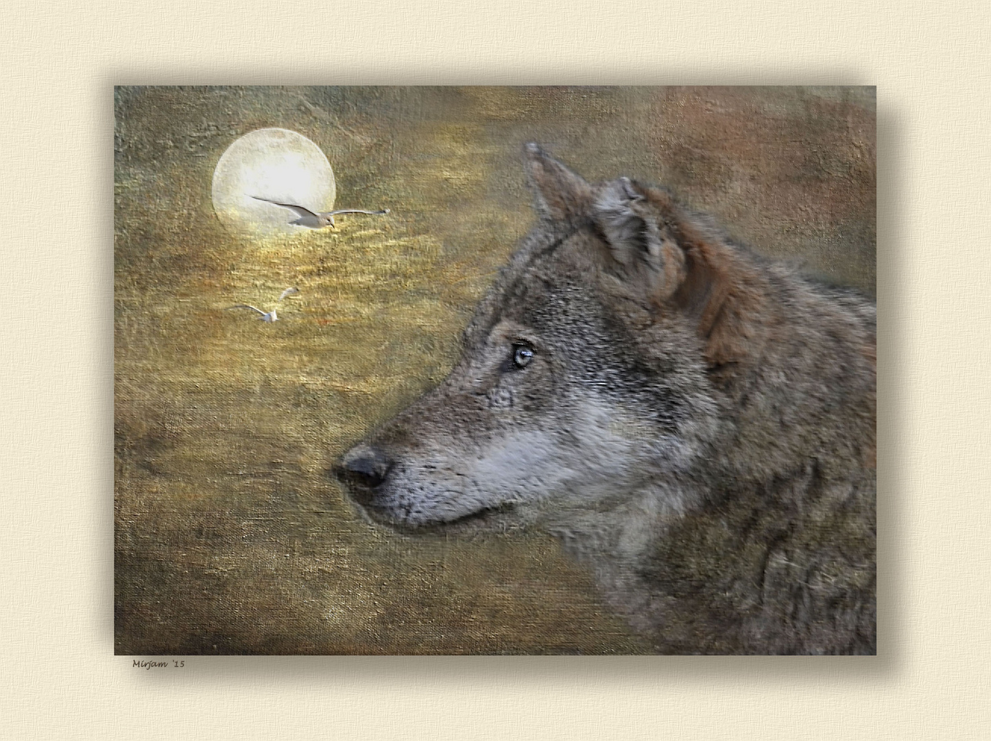 Wolf song ..