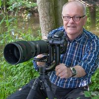 Wolfgang Zerbst - Naturfoto