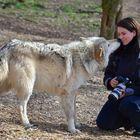 Wolfs-Eskimobussi