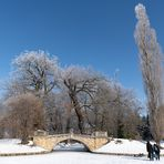 Wolfsbrücke im Wörlitzer Park