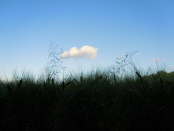 Wolke 1