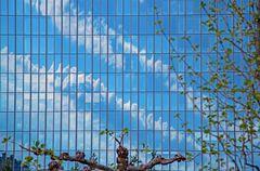 Wolken an der EZB-Fassade