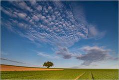 Wolken-Bild