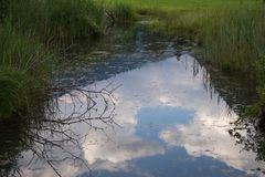Wolken im Teich