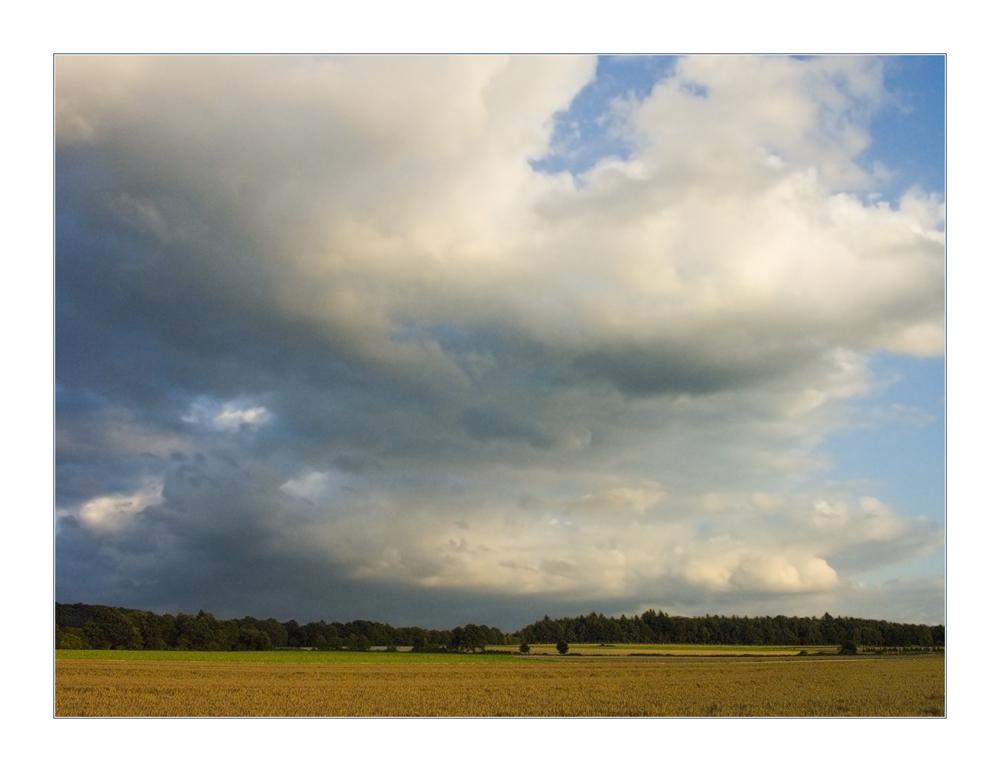 Wolken, Licht und keine Distel... (RELOAD)